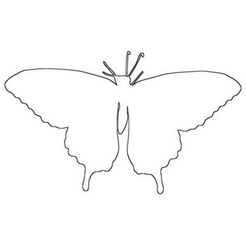 Awesome Butterfly Outline