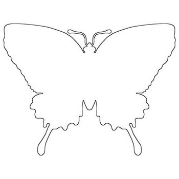 Beautiful Butterfly Outline