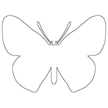 Charming Butterfly Outline