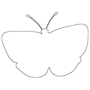 Popular Butterfly Outline