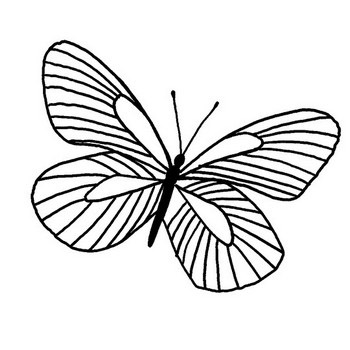 Joyful Butterfly Coloring Page