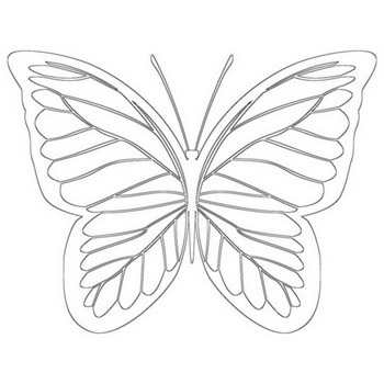 Regal Butterfly Coloring Page