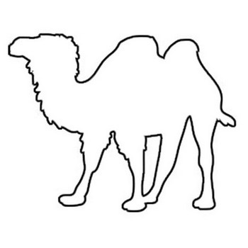 camel outline coloring page