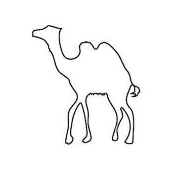Walking camel coloring page