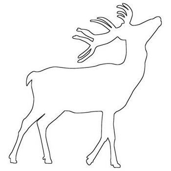 Deer Outline Coloring Page Free Deer Coloring Sheet